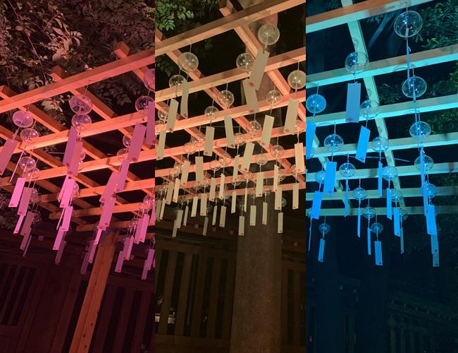 川越氷川神社 ライトアップ03