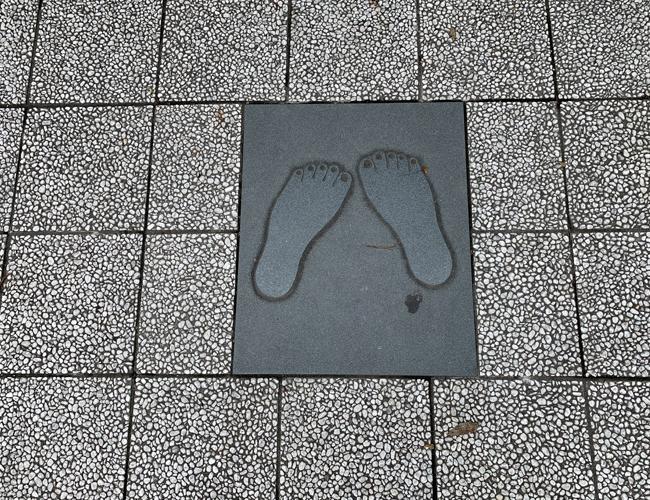 川越八幡宮 足跡
