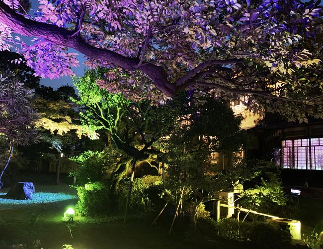 旧山崎家別邸 庭園のライトアップ