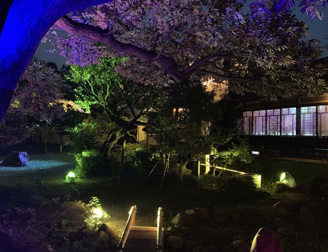 旧山崎家別邸ライトアップイベント 庭園の様子