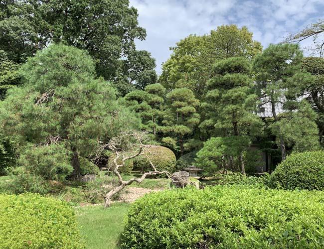 中院の庭園
