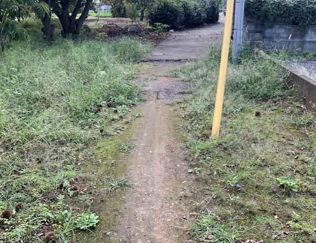 荒幡農園までの道のり