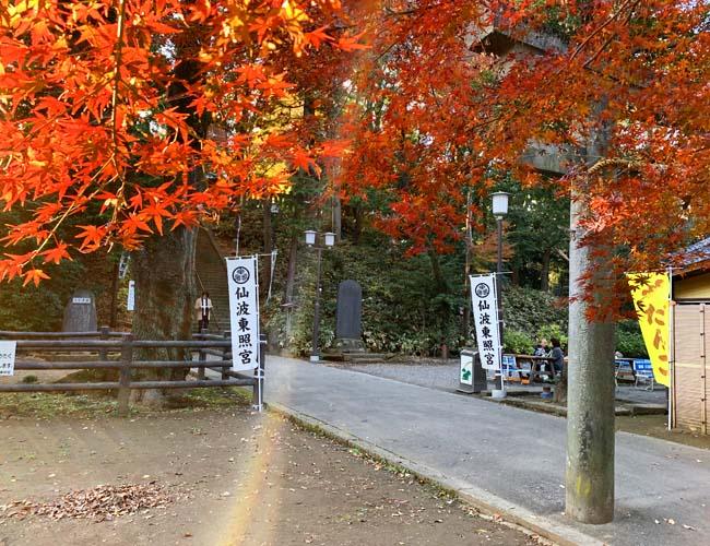 仙波東照宮の紅葉