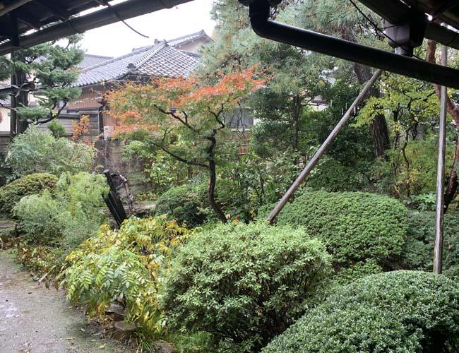 東屋 庭園