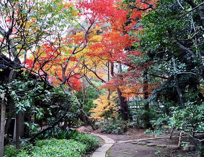 料亭 山屋の庭園