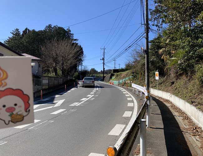 日高市の聖火リレールート道中記