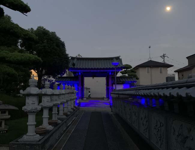 最明寺のブルーライトアップ