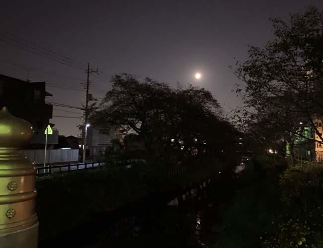 夜の氷川橋