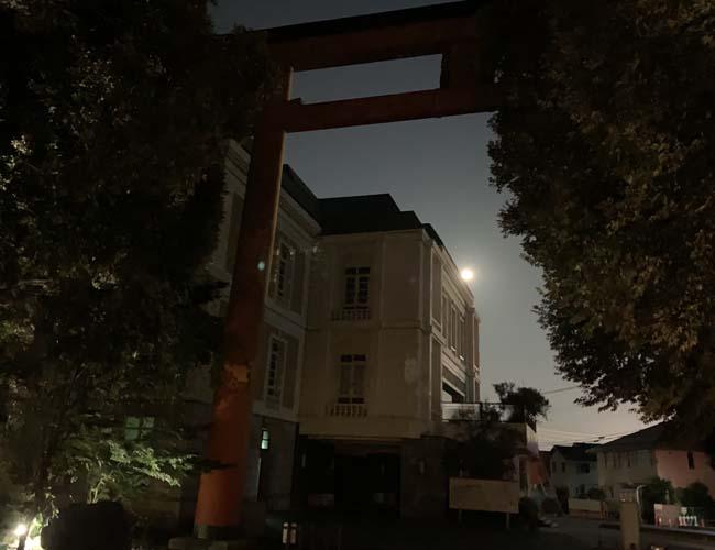 夜の川越氷川神社