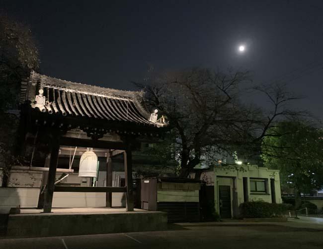 夜の蓮馨寺