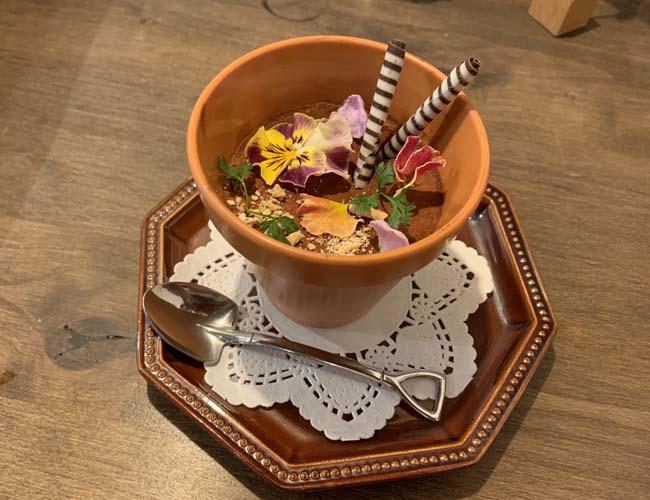 花香楽 鉢植えティラミス